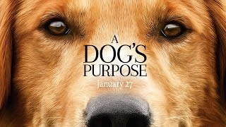 Gambar cover A Dog's Purpose - Official Trailer (HD)