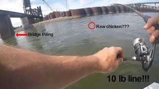 Catching a 51 LB Catfish on LIGHT TACKLE in TRICKY Situations (Ft. Realistic Fishing, Panfish)