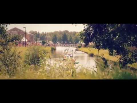 David Guetta & Showtek   Sun Goes Down Feat  MAGIC! & Sonny Wilson TOMORROWLAND