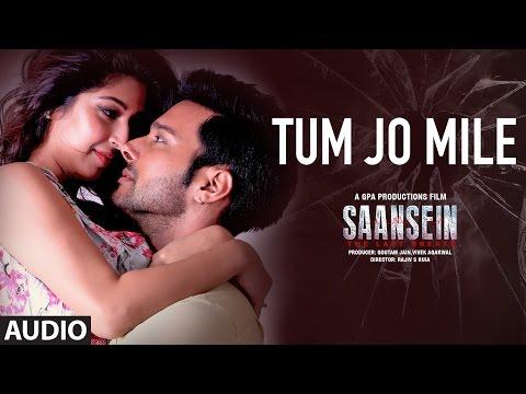 TUM HO MERE Full Audio Song | SAANSEIN | Rajneesh Duggal, Sonarika Bhadoria, Hiten Tejwani & Neetha