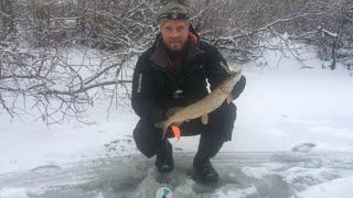 Ловля ЩУКИ на ЖЕРЛИЦЫ Зимняя рыбалка на МАЛОЙ РЕКЕ