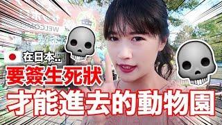【危險】要簽生死狀才能進去!日本最危險的動物園也太可怕了!!😱|MaoMaoTV thumbnail