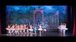 Bayer Ballet Academy Show Case 2018. Dream Scene from Don Quixote