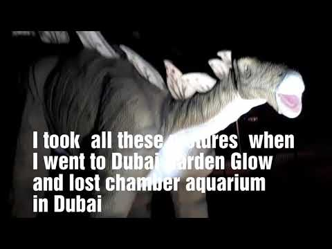 My tour to Garden Glow  and lost chamber aquarium in Dubai