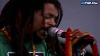 The Wailers - Trenchtown Rock Live (Gathering of the Vibes)