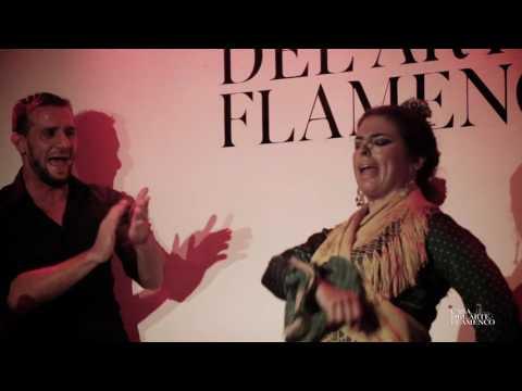 FLAMENCO SHOW CASA DEL ARTE FLAMENCO GRANADA