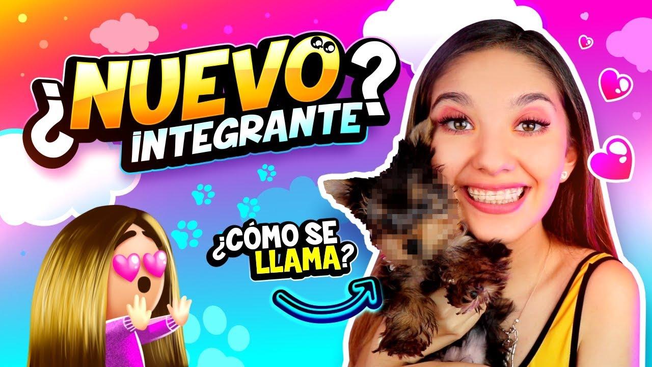 Tag De La Mascota Amara Que Linda Youtube