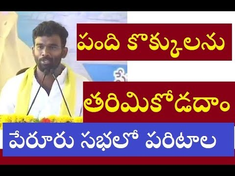 Paritala Sreeram comments on difference between CM Chandrababu Naidu and Opposition leaders