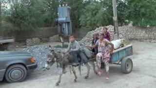 Поездка в Таджикистан -  видео-наброски П. Турсунова