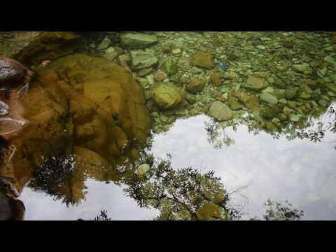 Nikon D3300-DSLR HD Video Sample @60 Fps
