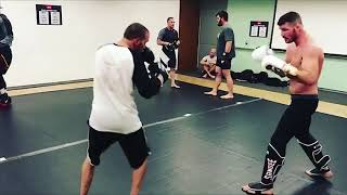 Michael Bisping looking sharp, throwing combinations & kicks days ahead of Gastelum fight