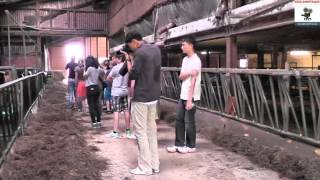 Gastschüler aus Singapur und Australien zu Besuch auf dem Hof Balz Frankenberg