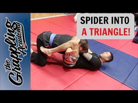 Spider Guard Into Triangle!