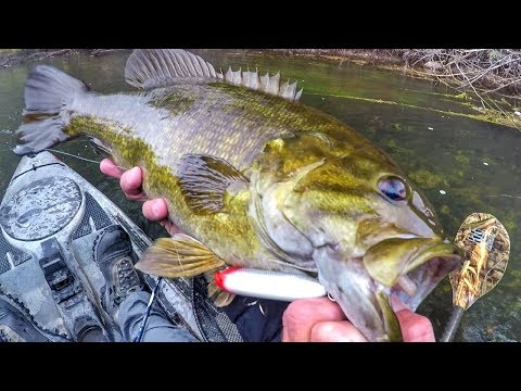 Giant Smallmouth In Topwater Season Overtime!