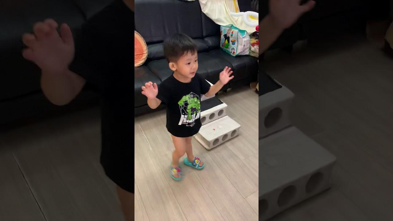 巧 虎 夢想 新 樂園 中文 版