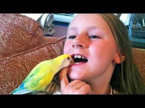 Most CREATIVE ways to PULL TEETH! 🤓🤓🤓 Funny Kids FAILS Compilation