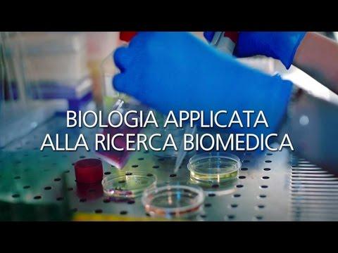 Laurea magistrale in Biologia Applicata alla Ricerca Biomedica (BARB)