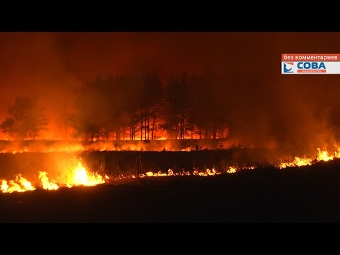 Пожар в окрестностях п. Большое Седельниково