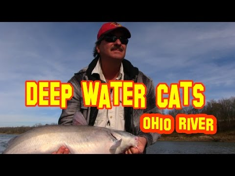 Video Trophy catfishing