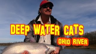 Deep water catfish:Trophy Catfish Care