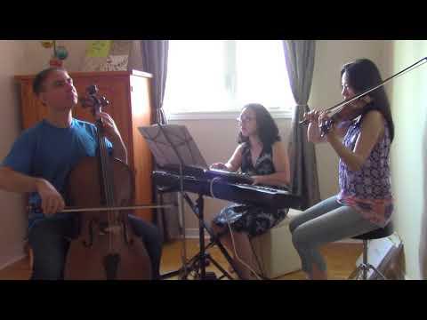 Air on G String - Violin Cello and Piano Trio