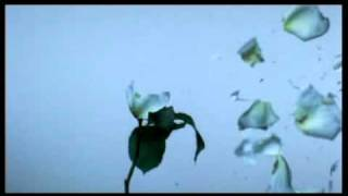 Amon Tobin - At the end of the day