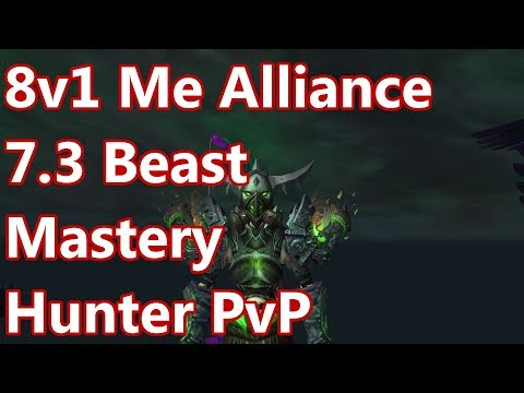 8v1 ME ALLIANCE - 7.3 Beast Mastery Hunter PvP - WoW Legion