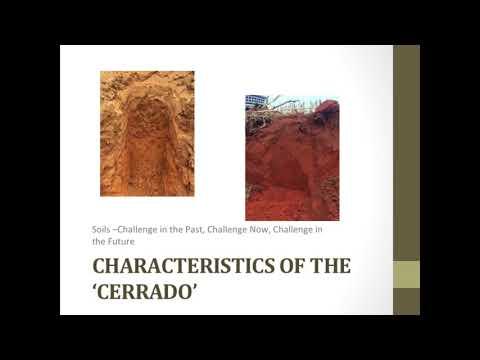 "Relevant Crop Production Systems in the ""Cerrado"" - Lucas Braga Daltrozo"
