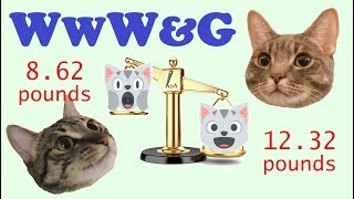 Wednesdays With Winnie & Gary 2018-03-07 thumbnail