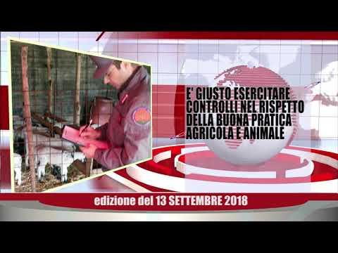 Velluto Notizie Web Tv Senigallia Ed  13 09 2018