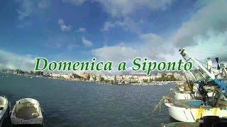 Pio e Amedeo - Domenica a Siponto