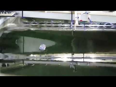 Wave tank experiment: Freak Wave Peregrine crashes into ship