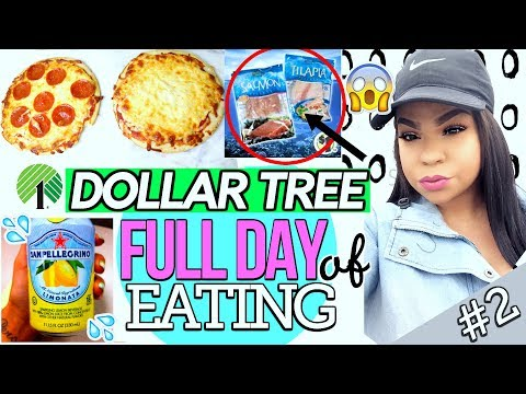 DOLLAR TREE: WHAT I EAT IN A DAY 2018! FULL DAY OF EATING DOLLAR STORE FOOD | REVIEWS + RECIPES #2