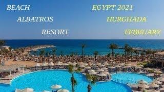 Египет 2021 Beach Albatros Resort Hurghada Пляжная территория отеля Февраль Дикий пляж