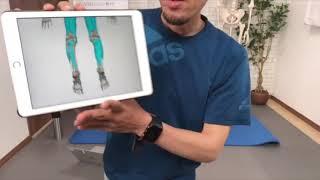 下肢・体幹のクロスポイント(部分カット)