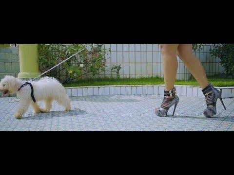 Featurist - Tu es Kindah (Official video)