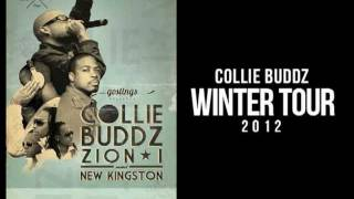Collie Buddz - I Feel So Good