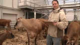 ITA - La Pocatière - Unité de production laitière biologique