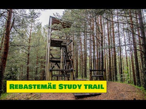 Rebastemäe Study Trail / Rebastemäe õpperada – Estonian Nature