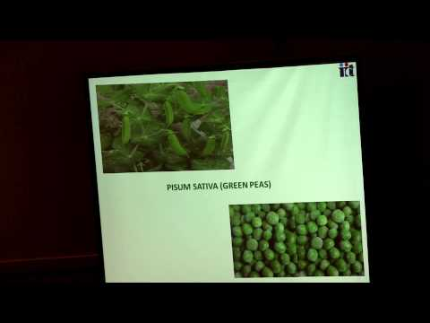 J S Yadav | Indian Inst of Chemical Tech | India | Green Chemistry 2014 | OMICS International