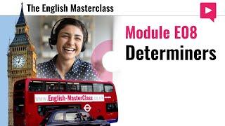 E08 Determiners Sample Lesson