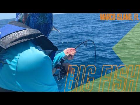 Marco Island Fishing, Florida (Giant Grouper, Sharks, Amberjacks Etc...)