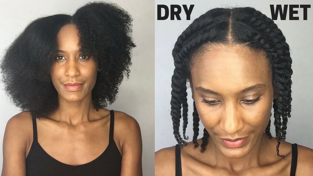 FLAT TWIST OUT ON DRY HAIR vs WET HAIR | Olivia Rose - YouTube