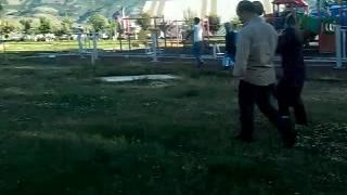 Ahmedi XAni parkı görüntüleri