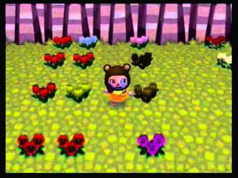 Animal Crossing City Folk Hybrid Flower Guide Youtube