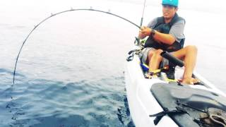 Kayak Fishing For Yellowtail With Cesar • Malibu California