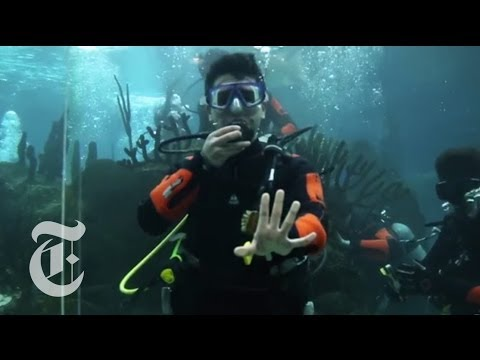 Unique Internship Sends Students Underwater | The New York Times