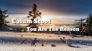 Calum Scoot -  You Are The Reason 🎶