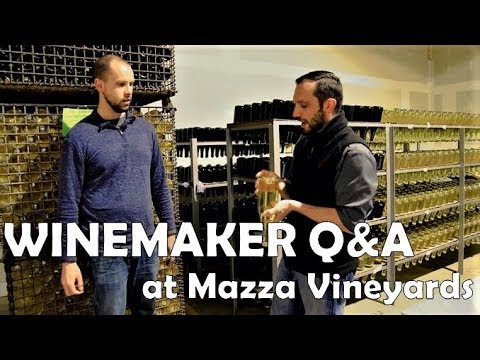 Winemaker Q&A At Mazza Vineyards In Erie, PA