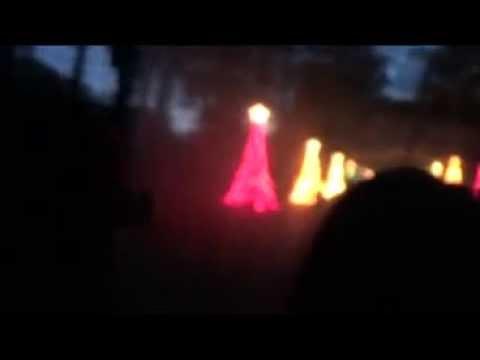 Callaway Garden Light Show